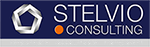 STELVIO BUSINESS CONSULTING Logo